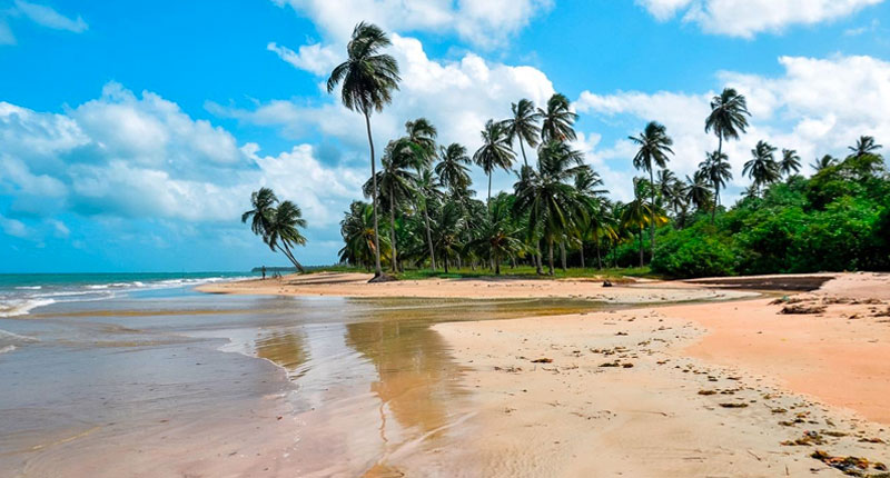 Melhores praias do Brasil: conheça 10 opções incríveis - Praia do Patachó – São Miguel dos Milagres